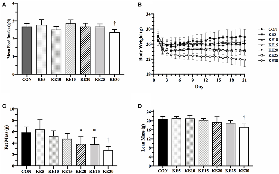 Effects of a Dietary Ketone Ester on Components of Energy Balance in Mice