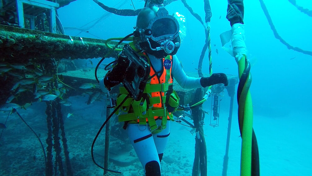 First research results from the NASA Extreme Environment Mission Operations 23/ Changes in Individual and Team Cognition in High Stress Extreme Underwater Saturation Environment Under Intense Workload